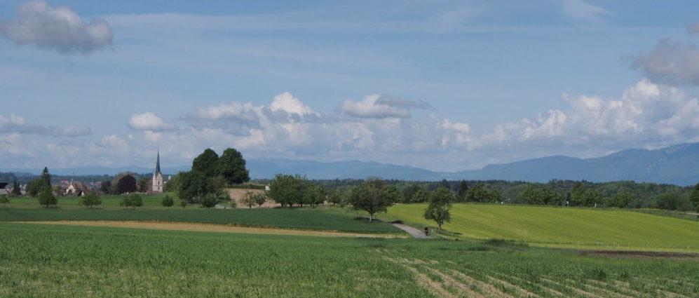 Buchsi Landschaft