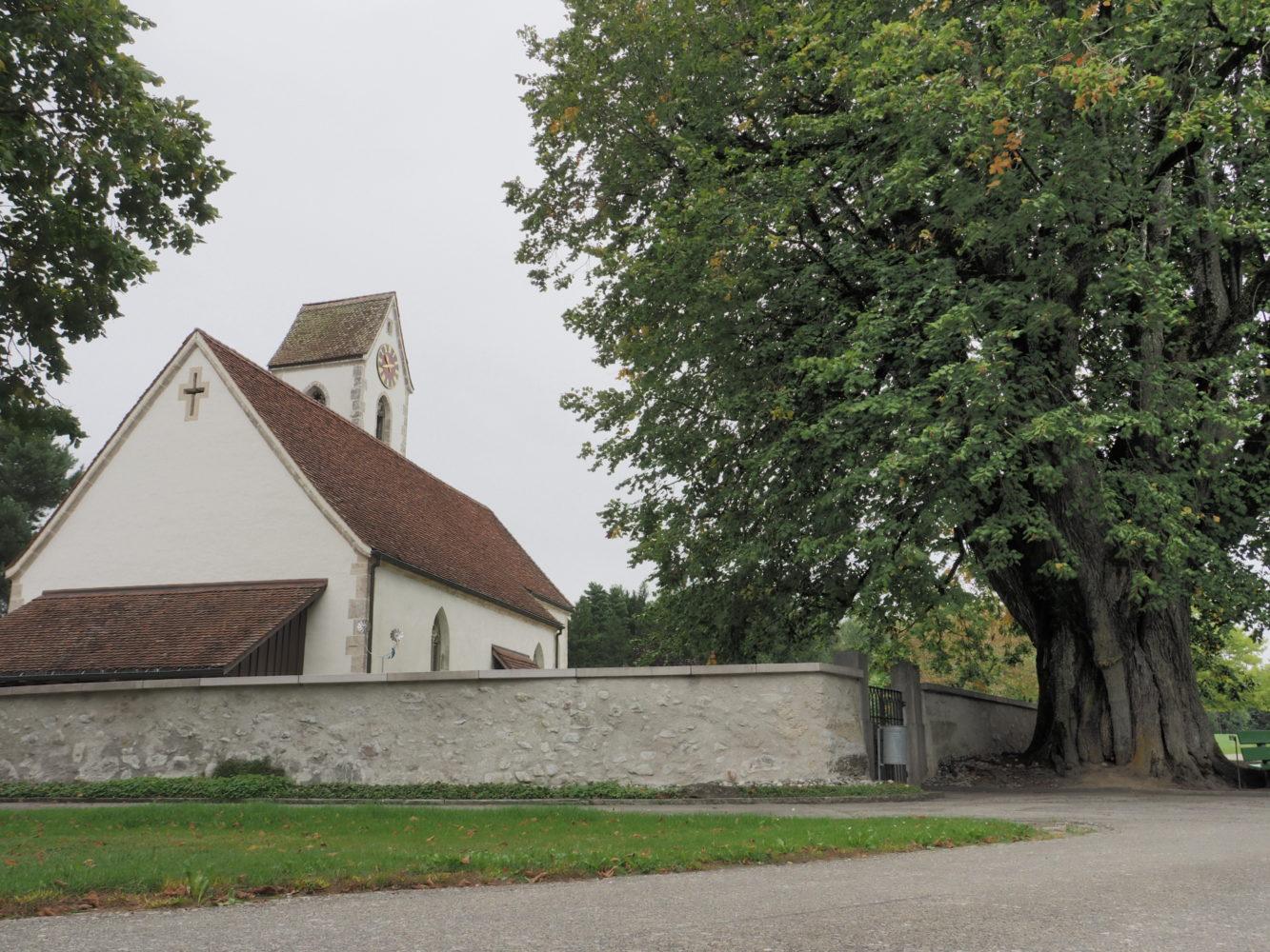 Die Kirche von Seeberg mit der 500 Jahre alten Linde