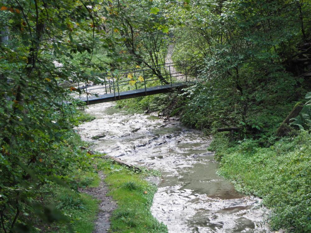 Mutzbach Oberlauf