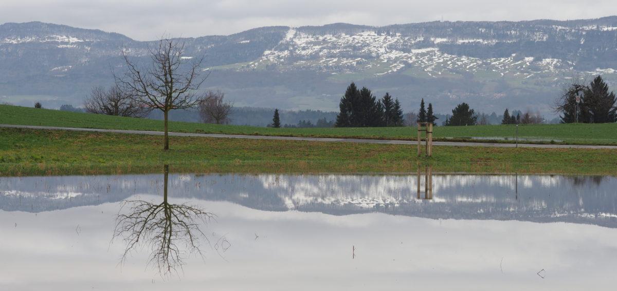 Wasserlandschaft auf der Allmänd