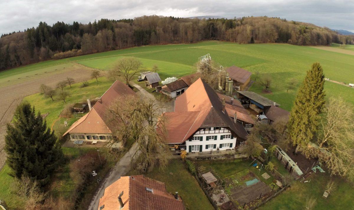 Fluehacher in Niederönz