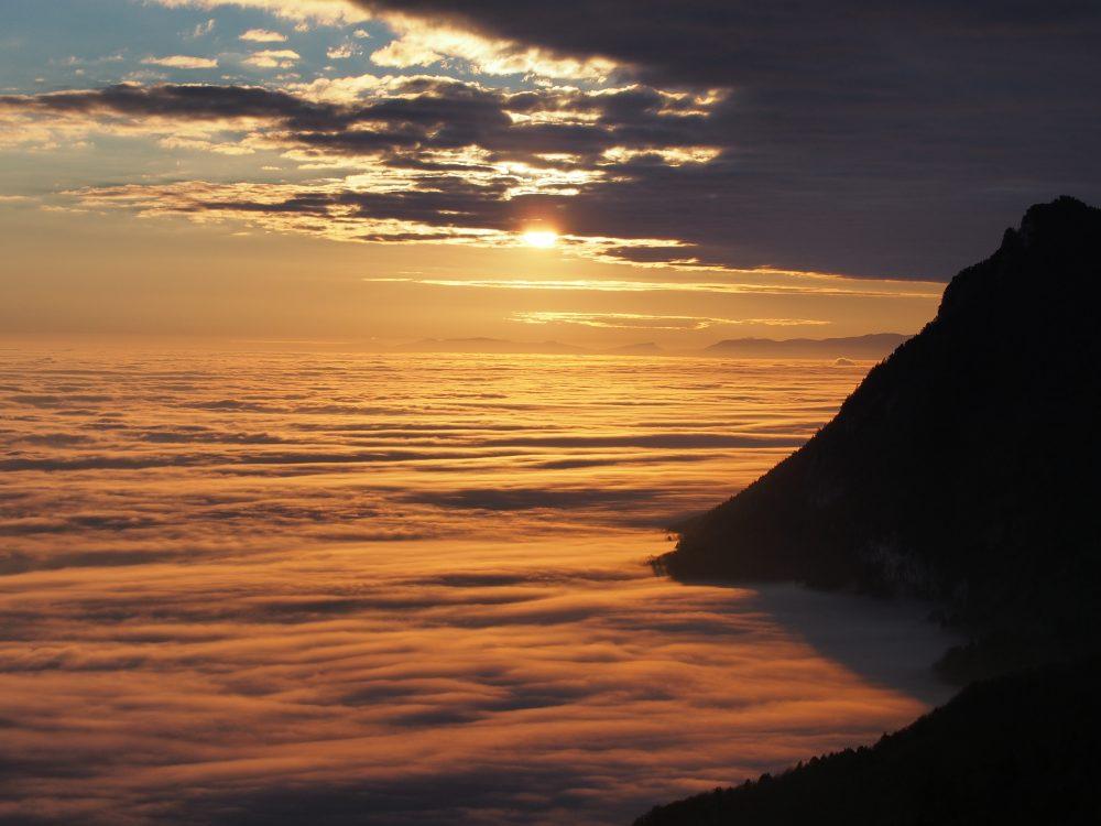 An der Küste des Nebelmeeres