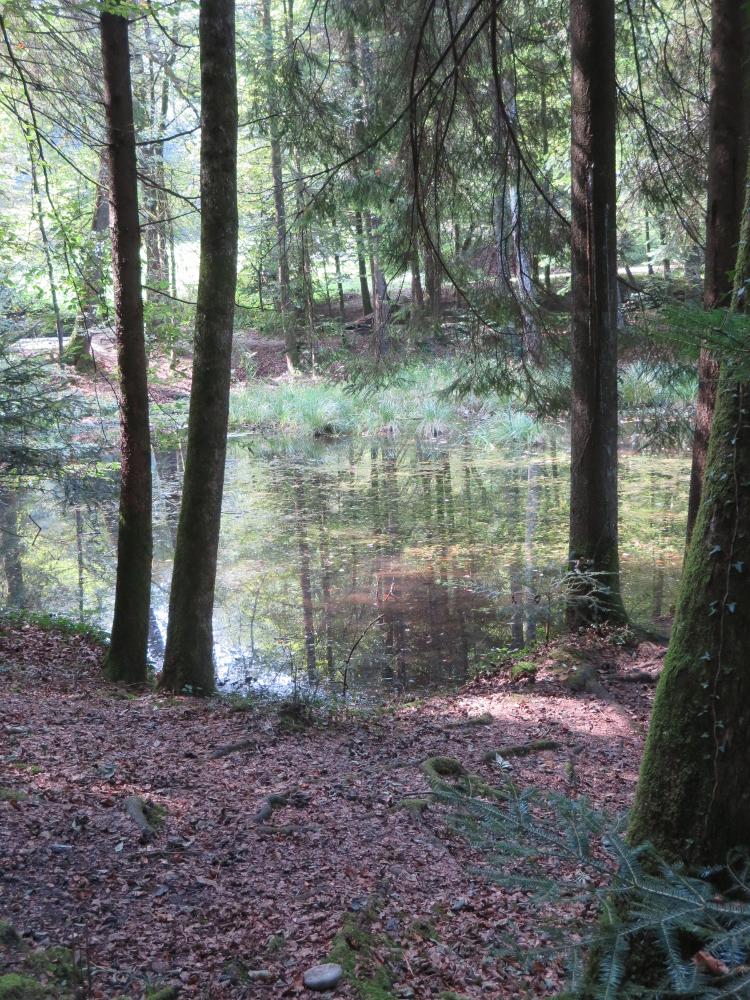 Steibachweiher
