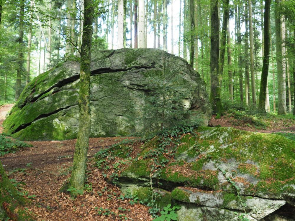 Schalenstein auf dem Steinhof