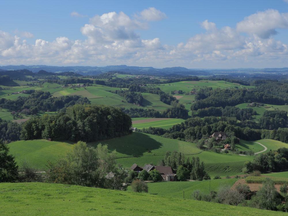 Oberbühlchnubel Blick Richtung Bern