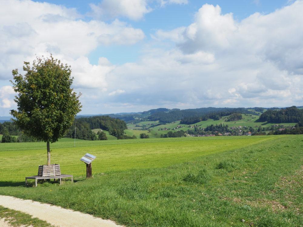Aussichtspunkt mit Panoramatafel bei Lünschberg